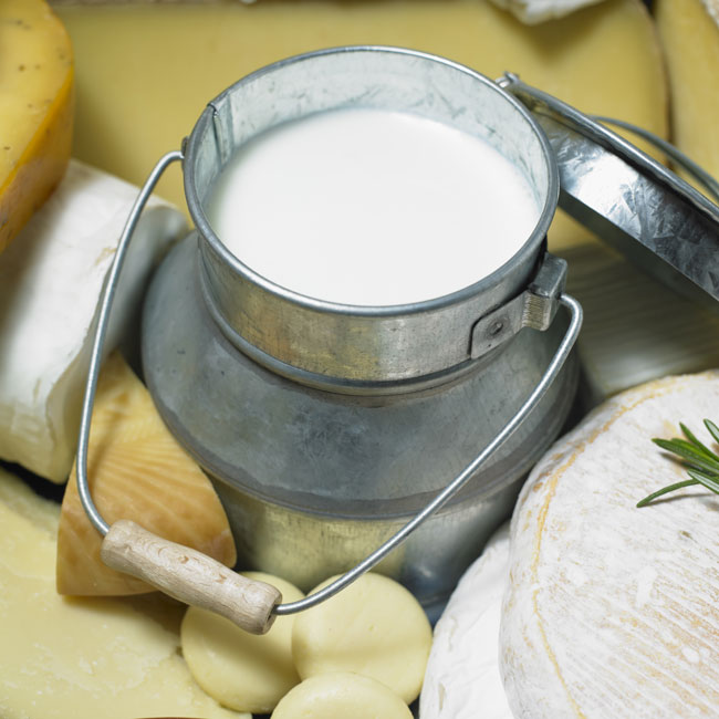 kanegrade-dairy-products-ingredients